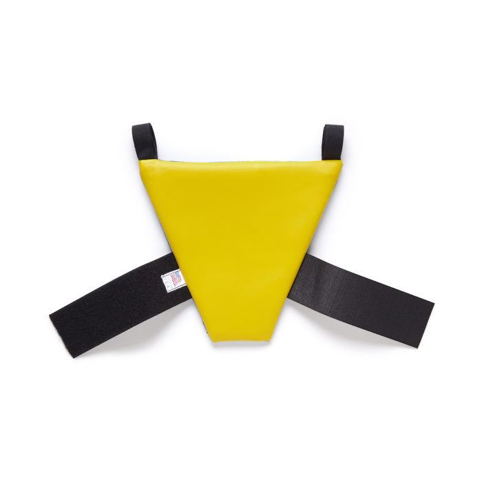 Yellow Back of New PunkinPie